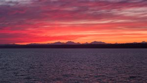 ferry sunrise