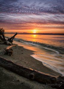 Kingston Sunrise at the beach