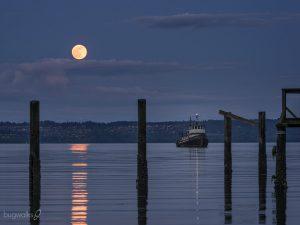 Kokua moonrise, Kingston, Washington