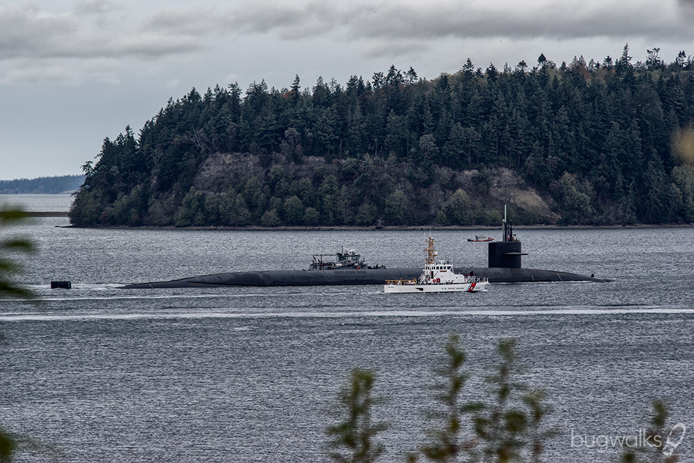 sub departing hood canal